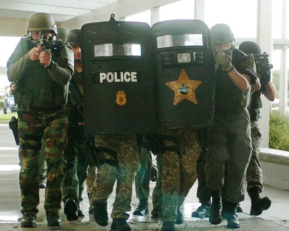 police excessive use of force essay